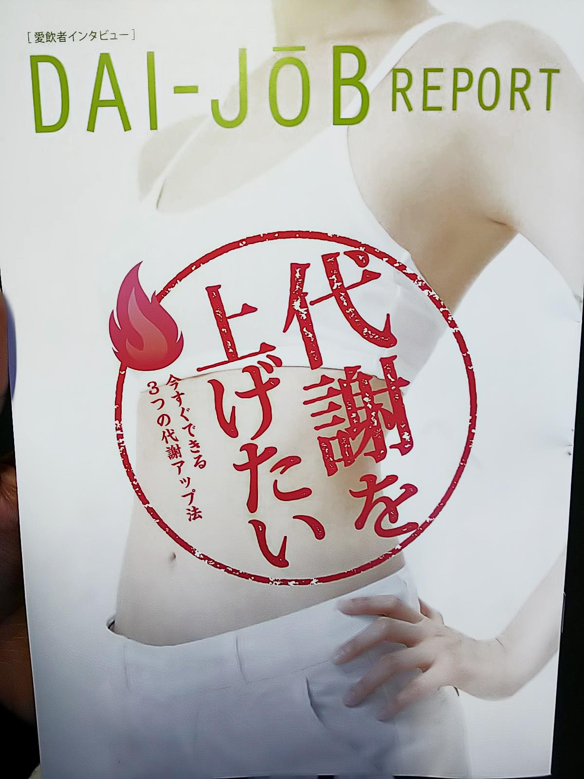 (株)サントリー サプリメント 同梱誌 DAI-JOB REPORT 代謝アップ法 記事監修